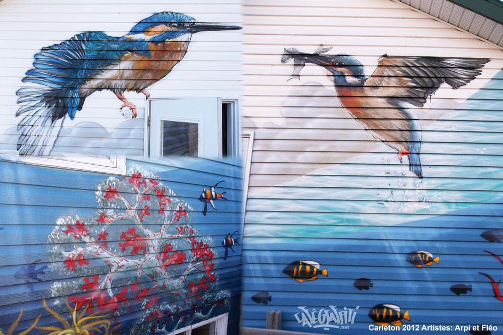 carleton-affiche-murale-maison-des-jeunes-6