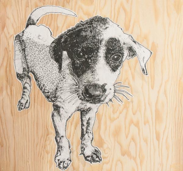 arpi-chien noir et blanc