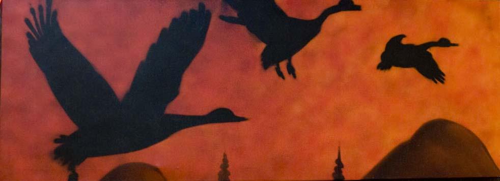 oiseau noire