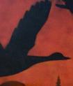 oiseau-noir